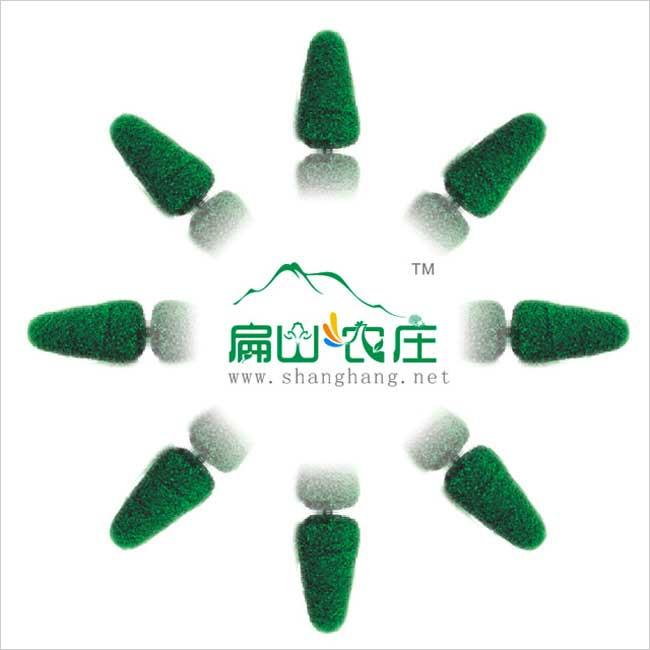 绿色仿生态农庄设计