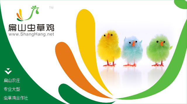 扁山虫草鸡蛋标志
