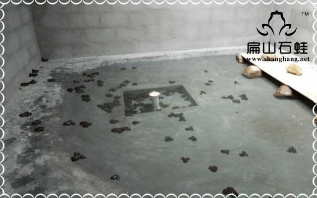 石蛙水质专题教材