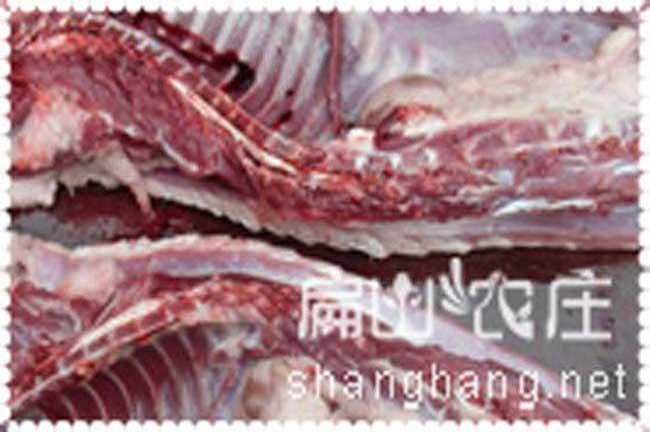 龙岩商品豪猪肉出售