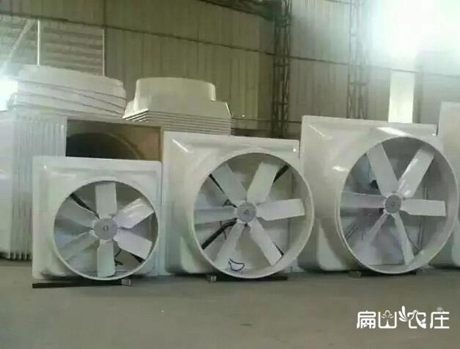 福建工业养殖场排风扇生产