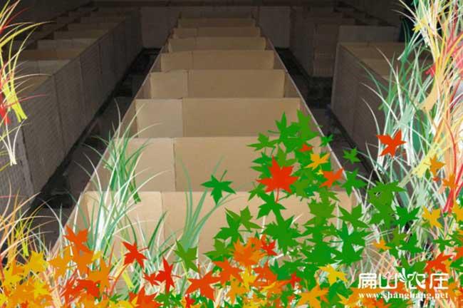 陕西竹鼠养殖基地设计