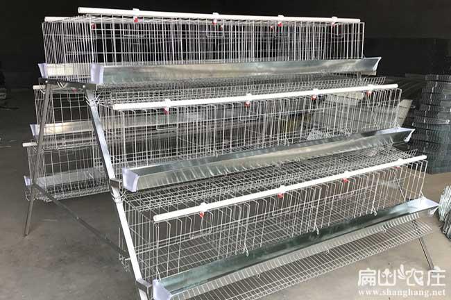 土鸡养殖设备鸡笼