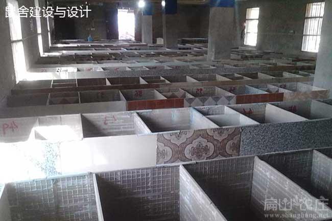 广东竹鼠养殖基地