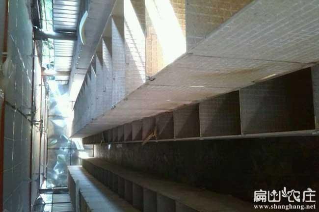 吉林最大的竹鼠养殖基地