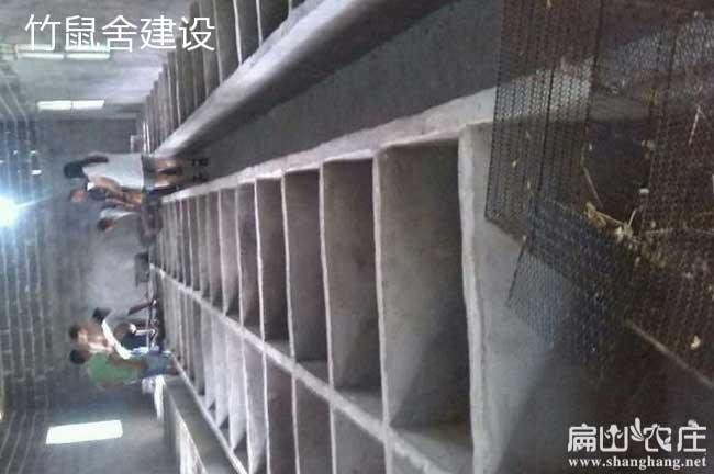 柳州三江、融水兔子养殖合作社