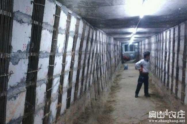 中国最大中的中华竹鼠养殖基地