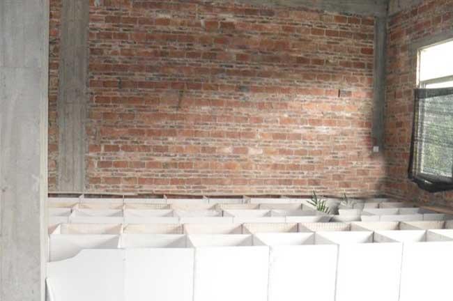 柳州兔子舍建造