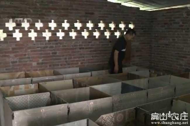 新郑竹鼠养殖场