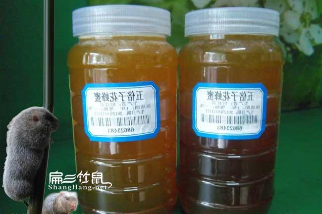 神农架蜜蜂养殖