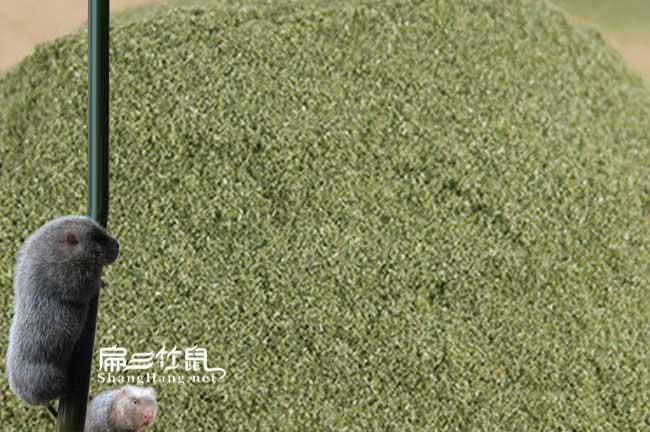 中国竹鼠专用食疗