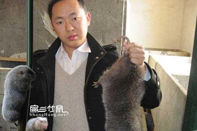 农村竹鼠养殖创业张文明