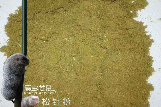 竹鼠竹鼠养殖技术交流微