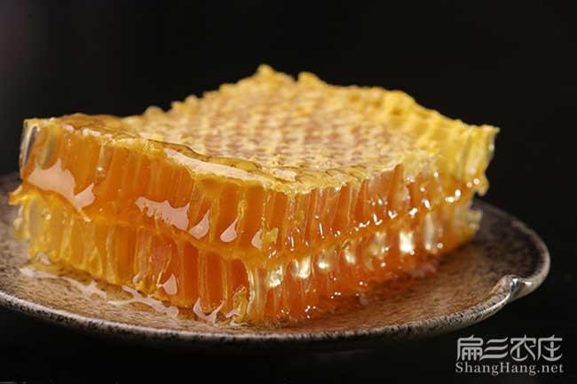 扁山蜜蜂批发