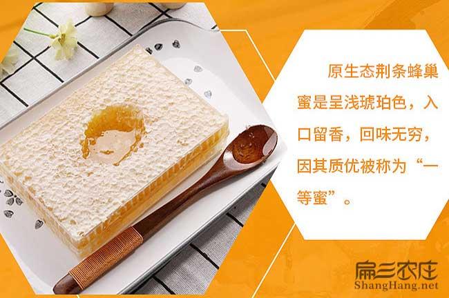 宁波蜜蜂养殖