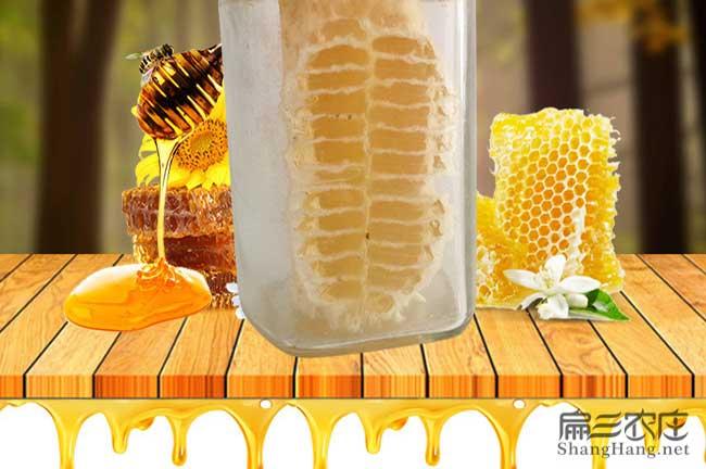蜂巢蜜批发价格