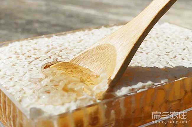 舟山蜂巢蜜批发