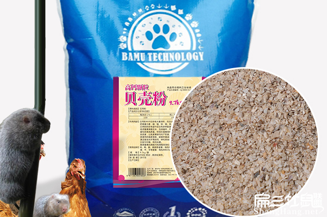 贝壳粉可以补钙
