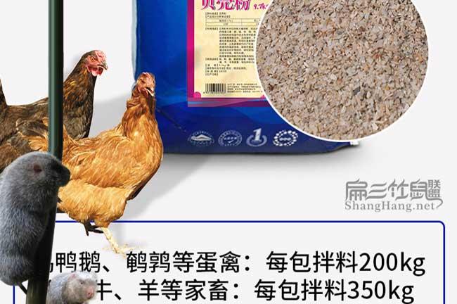竹鼠补钙贝壳粉价