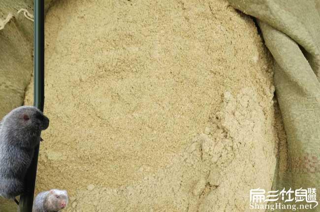 重庆竹鼠养殖米糠
