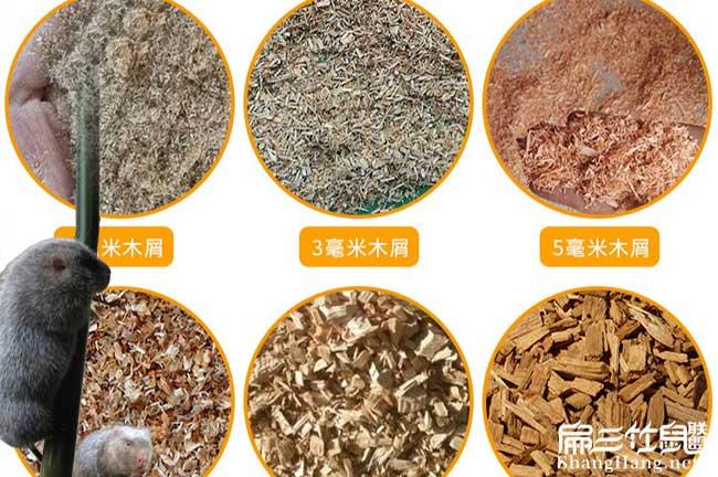 竹粉机食物
