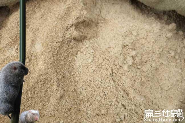 泉州竹鼠米糠批发