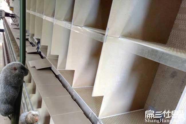 竹鼠舍瓷砖