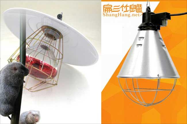 竹鼠养殖保温灯