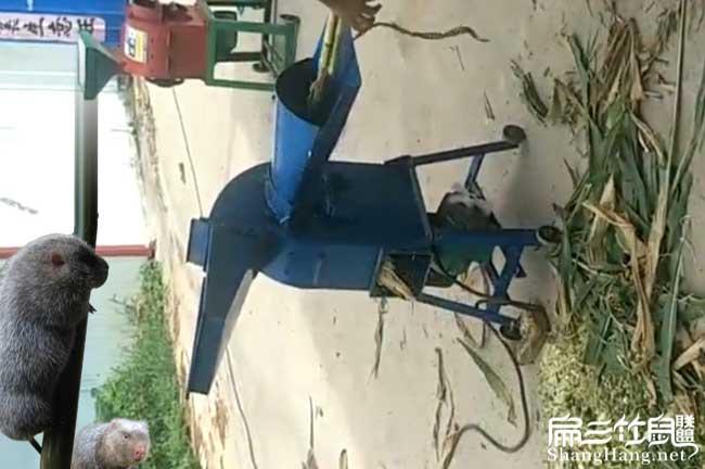 竹鼠养殖设备