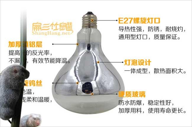 竹鼠养殖灯