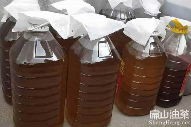 广东蟠龙茶油批发