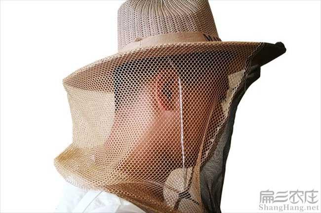 贵州蜂帽子