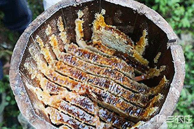 遵义蜂巢蜜