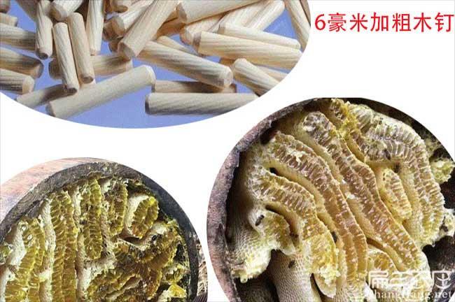 贵州蜂蜜养殖