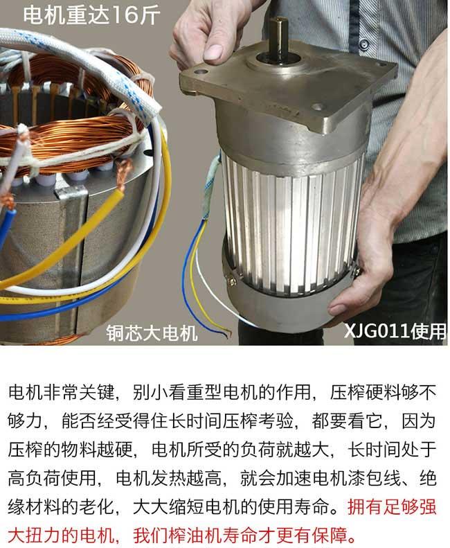 刘畈油茶种植重在大观