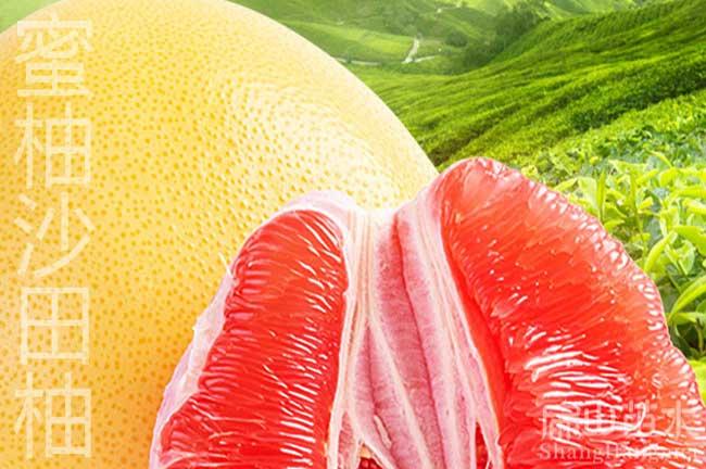 漳州蜜柚批发