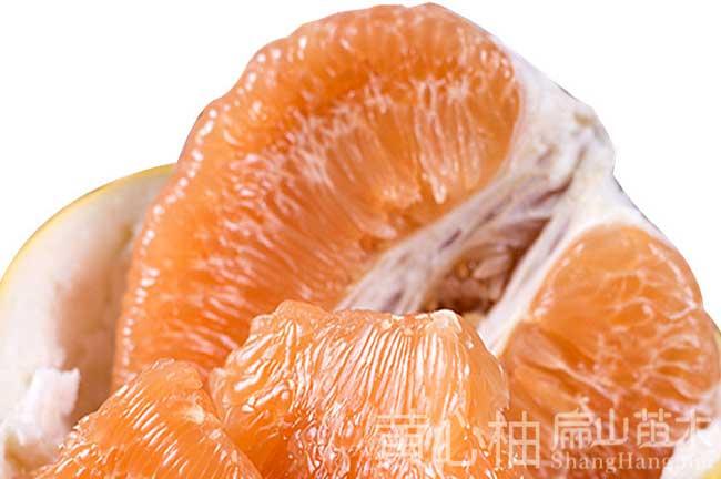 红河黄心柚子