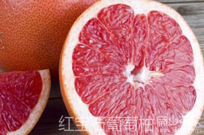 贵州红宝石柚子种植