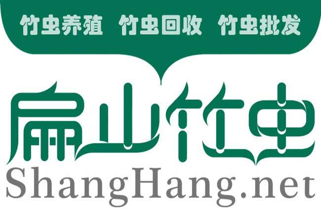 浙江竹虫养殖基地