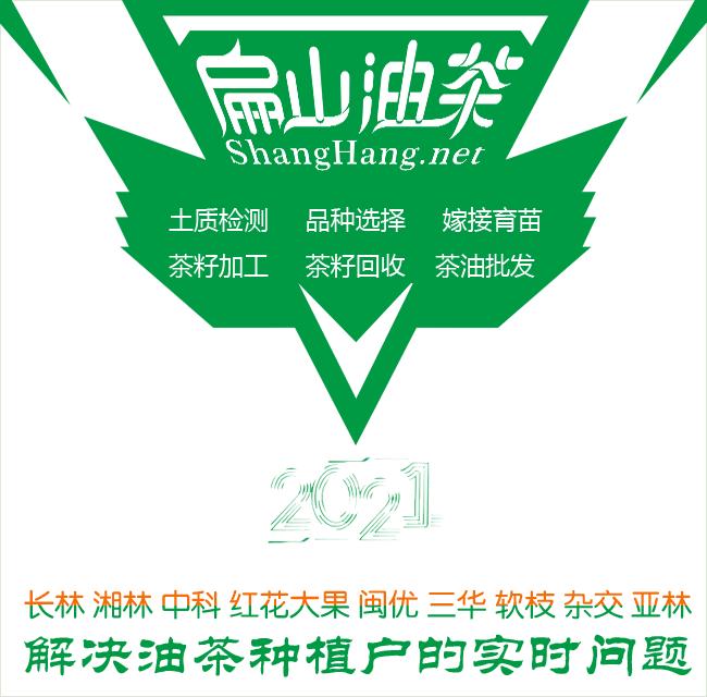 扁山油茶Logo