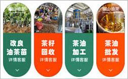 湘潭油茶苗培育示范基地