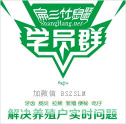 芜湖竹鼠养殖技术群