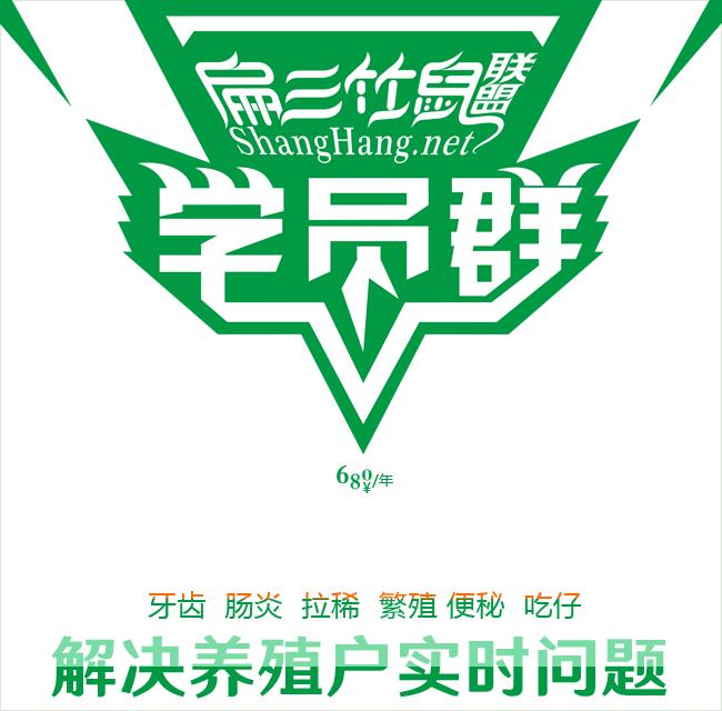 广东竹鼠养殖技术培训